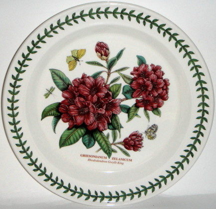 Portmeirion Botanic Garden Designs portmeirion botanic garden seconds tea cup and saucer set of 6 no guarantee of flower design Portmeirion Botanic Garden Dinner Plate Rhododendron