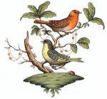 Herend Rothschild Bird Motif #3