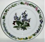 Royal Worcester Herbs Green Trim